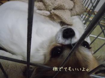 20140320_19.jpg