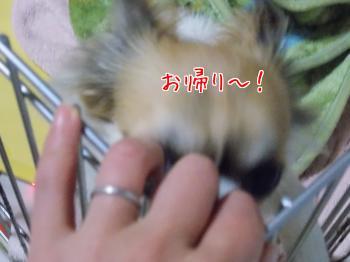20140327_6.jpg