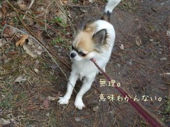 20140328_19.jpg