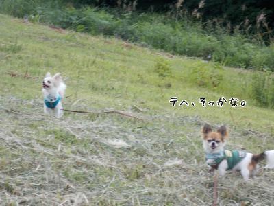 20140329_1.jpg
