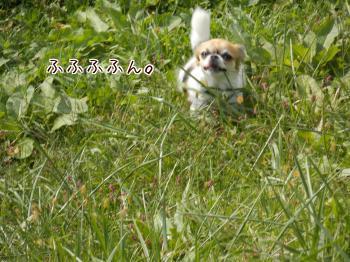 20140329_11.jpg