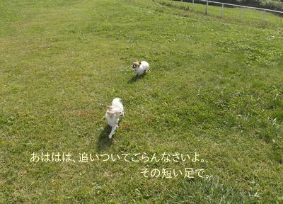 20140329_13.jpg