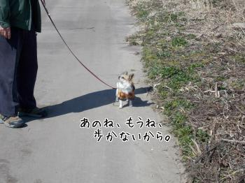 20140415_6.jpg