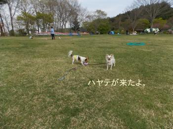 20140505_36.jpg