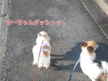 20140508_6.jpg