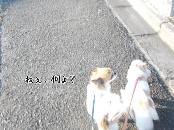20140508_8.jpg