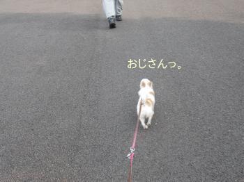 20140612_2.jpg