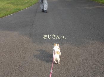 20140612_3.jpg