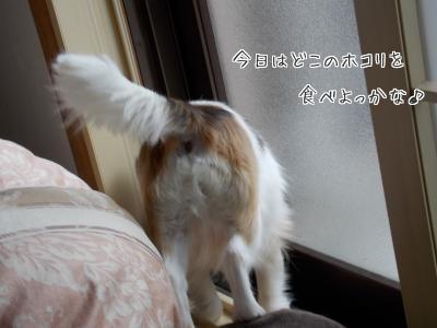 20140623_2.jpg