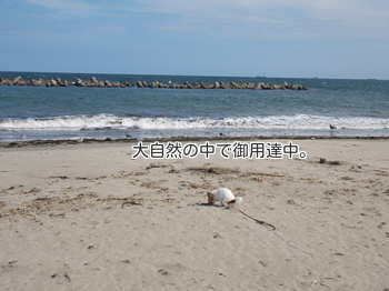 20140830_24.png
