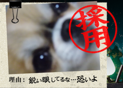 20140901_16.png