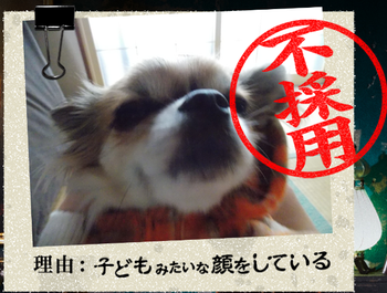 20140901_18.png