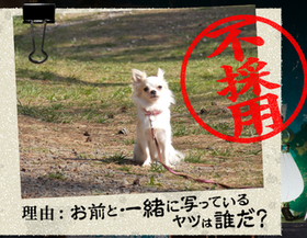 20140901_22.png