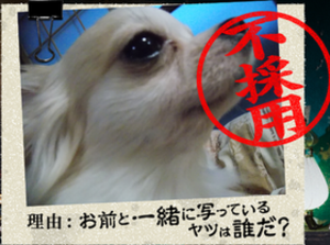 20140901_34.png