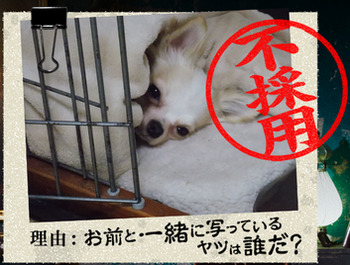 20140901_5.png