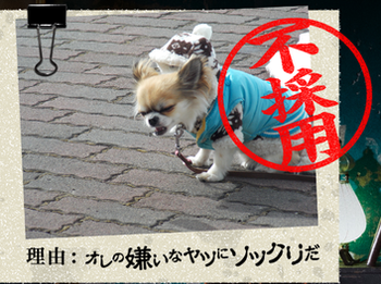 20140901_9.png