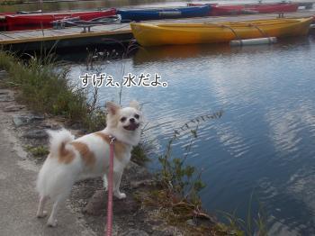 20140916_6.jpg