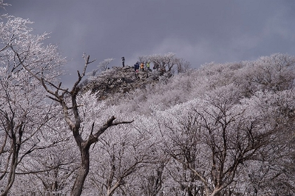20140405藤原岳05