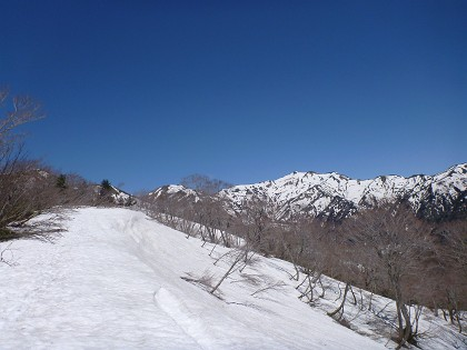 20140517銚子ヶ峰06
