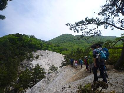 20140525竜ヶ岳03