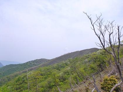 20140525竜ヶ岳05