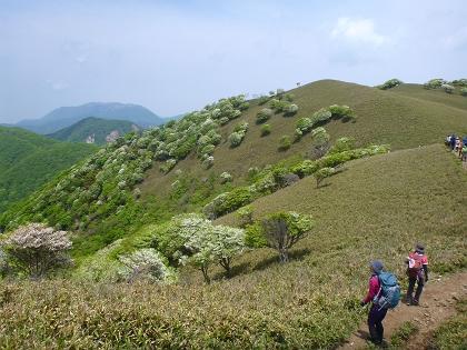 20140525竜ヶ岳12