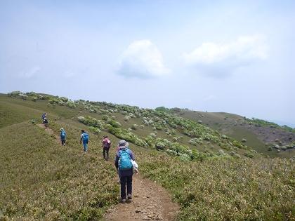 20140525竜ヶ岳13