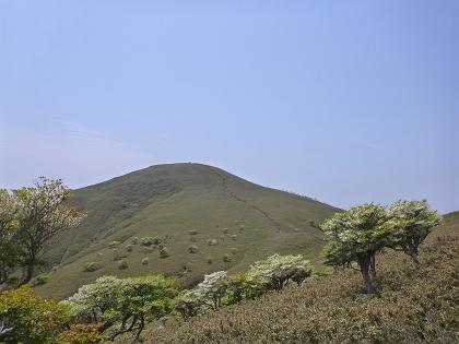 20140525竜ヶ岳15