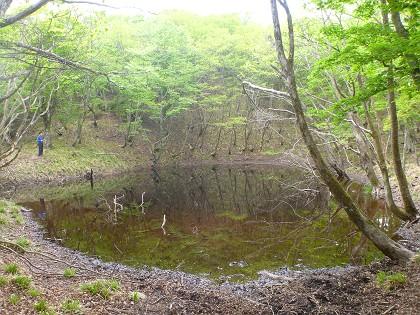 20140525竜ヶ岳17