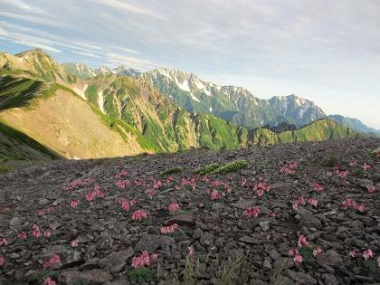 20140803針ノ木岳12