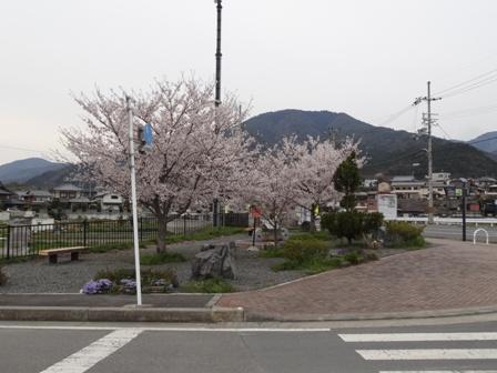 DSC04988.jpg
