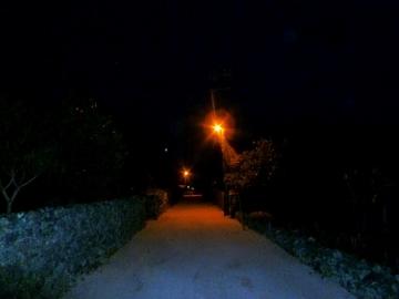 竹富島夜2