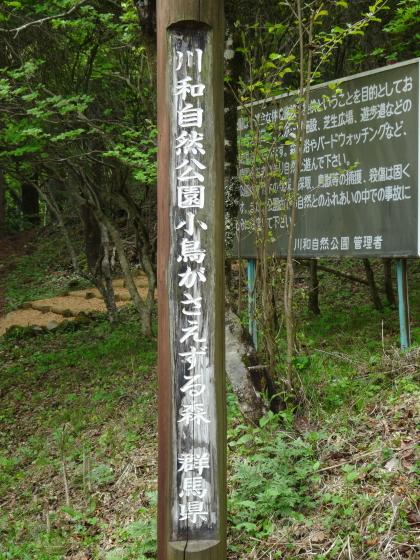 川和自然公園1