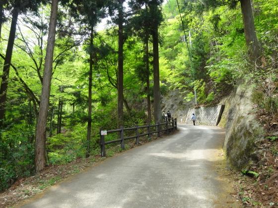 川和自然公園3