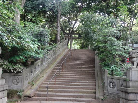 氷川神社2
