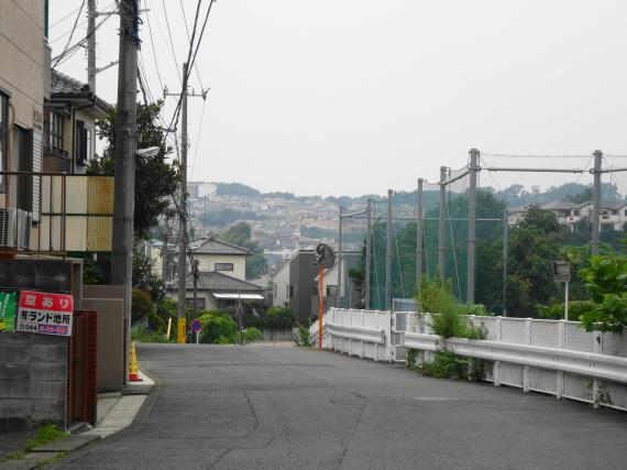 百合ケ丘 道端