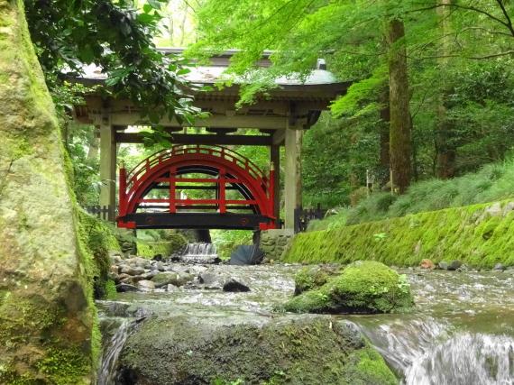 弥彦神社 玉の橋