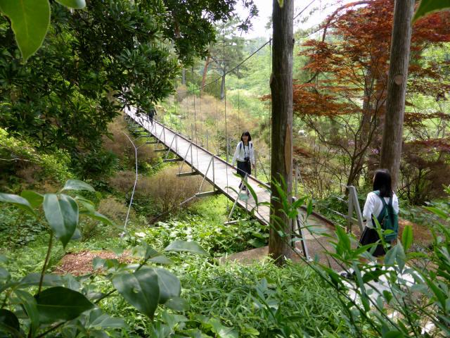 フラワーパーク吊橋1