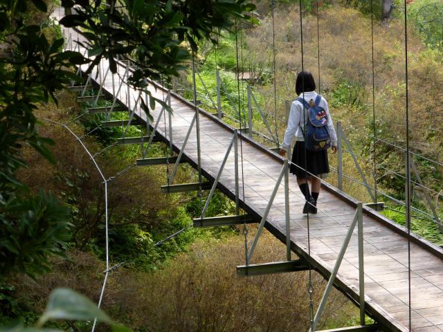 フラワーパーク吊橋2