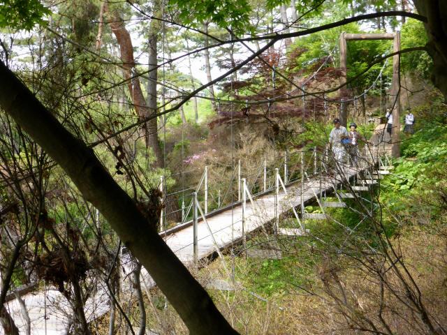 フラワーパーク吊橋4