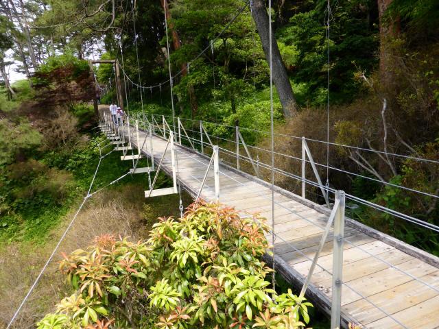 フラワーパーク吊橋6