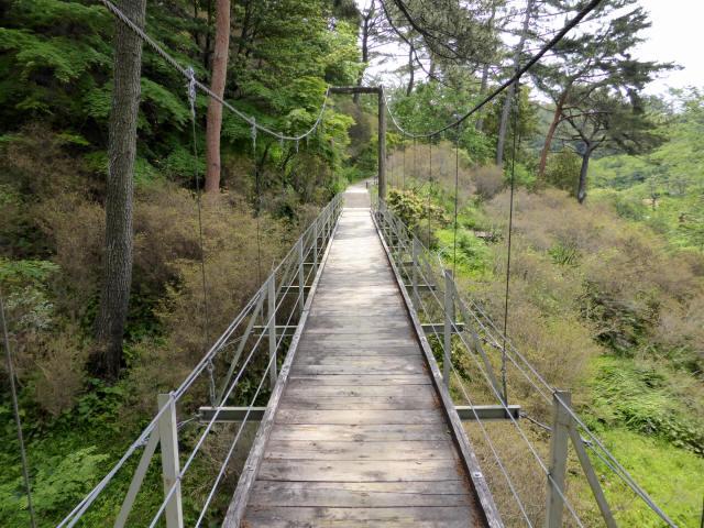 フラワーパーク吊橋7