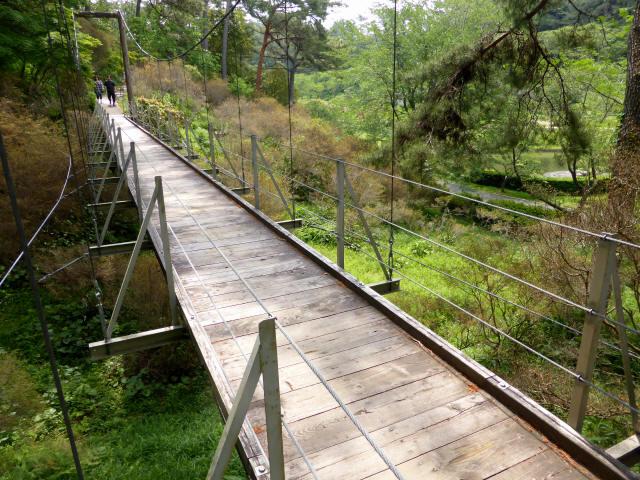 フラワーパーク吊橋8