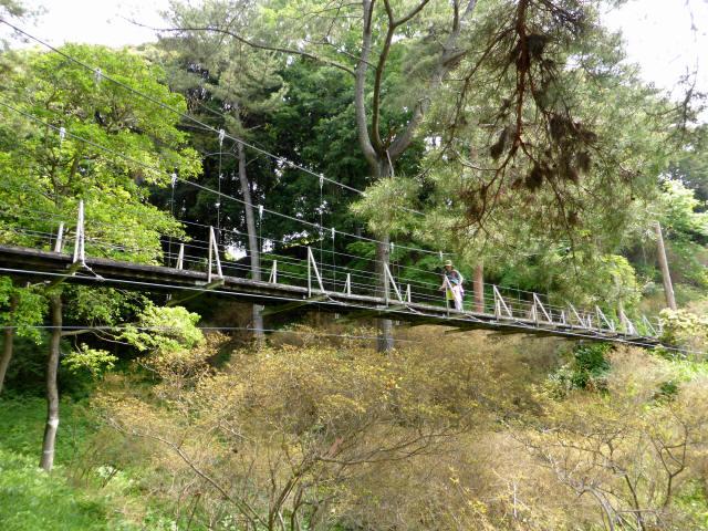 フラワーパーク吊橋9