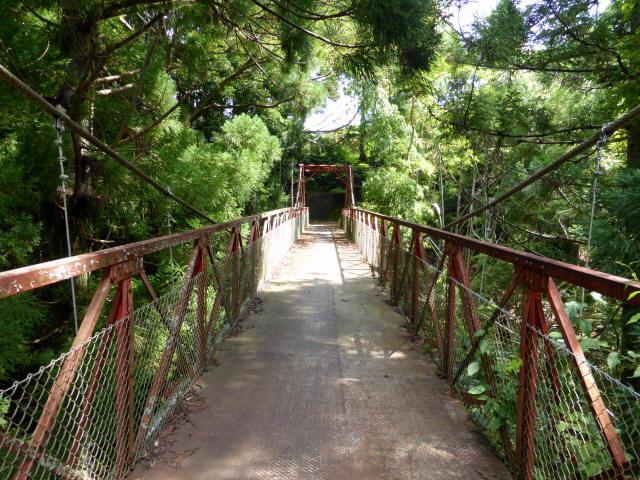 井戸川の吊橋9