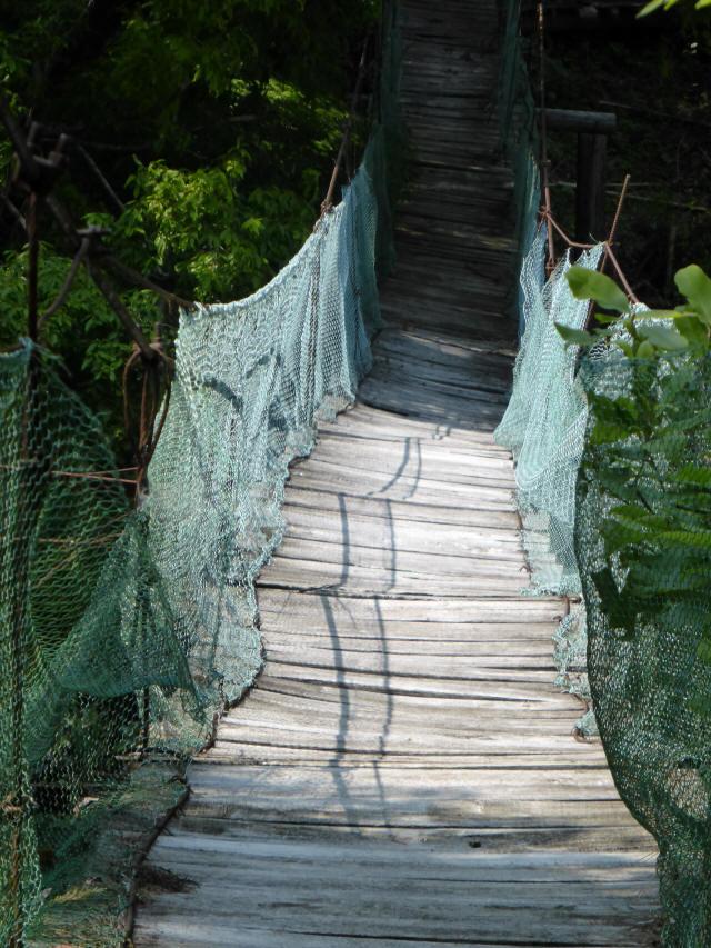 みどり湖の吊橋2