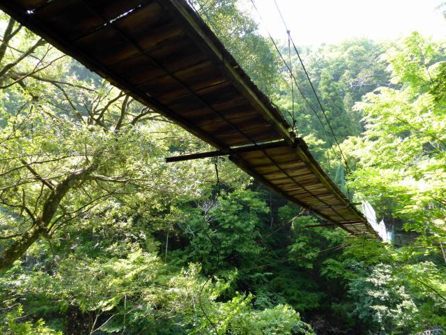 みどり湖の吊橋6