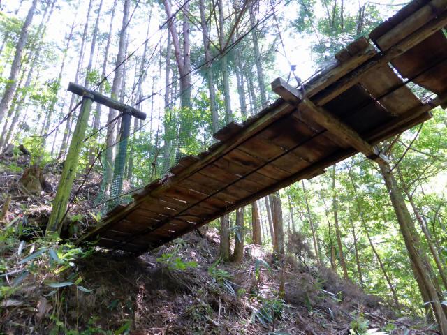 みどり湖の吊橋8