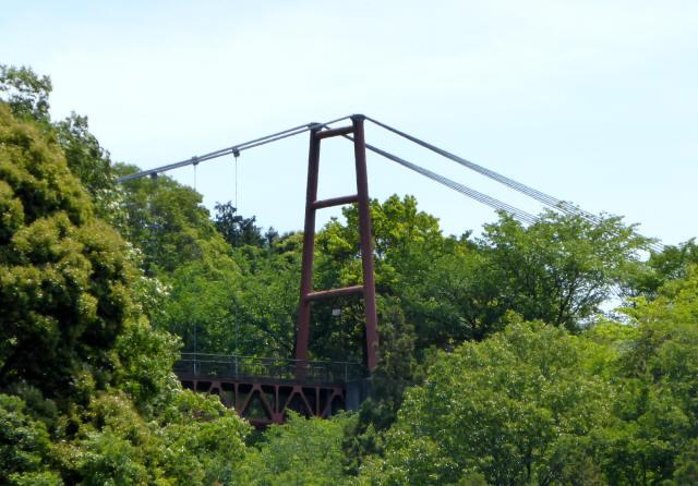 ときめき橋19
