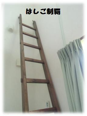 はしご制覇